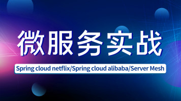 Java/Spring Cloud Alibaba/Server Mesh/微服务/源码解析